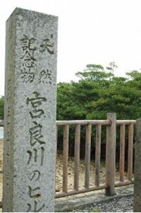 天然記念物「宮良川のヒルギ林」の碑
