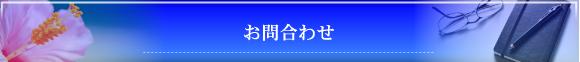 ガル探偵学校 沖縄リゾート校