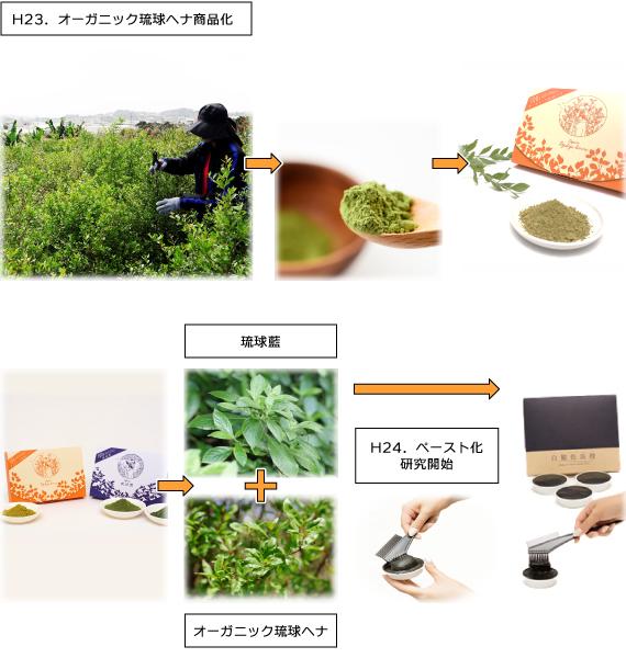 H23 オーガニック琉球ヘナ商品化