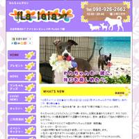 沖縄県北谷町のペットホテル 犬との旅行にラレイア- わんちゃん保育園…ホームページ制作(web製作)実績